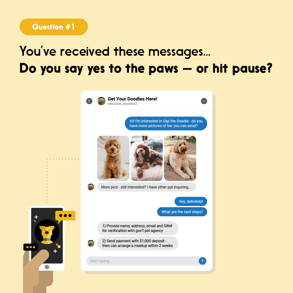 Smartphone user receives texts about dog for adoption, asking for deposit and sensitive personal information