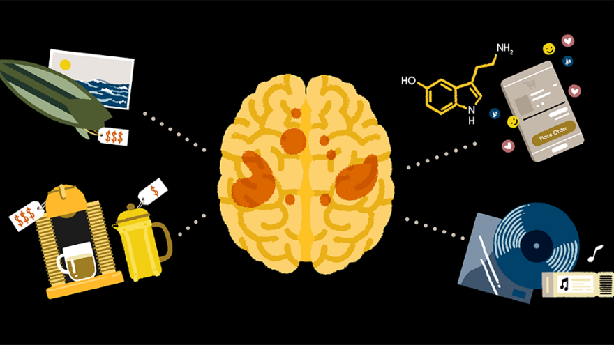 Illustration: stylized image of a brain and icons representing things and experiences people can buy